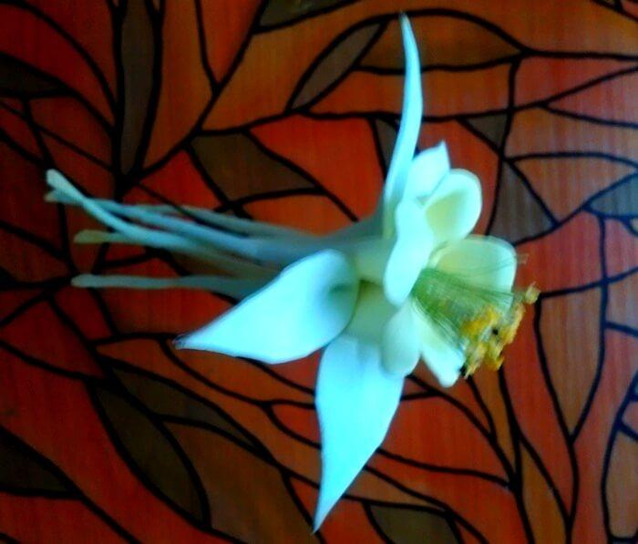 Цветок аквилегии из фоамирана